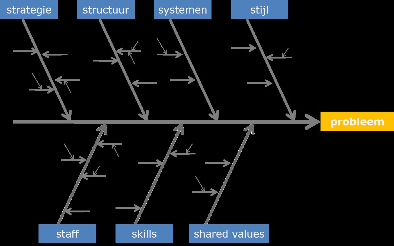 Visgraat Diagram Ishikawa Projectmanagementsite